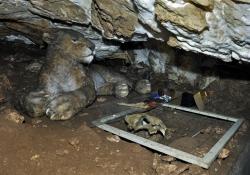 2016_05_8905_jaskinia-niedzwiedzia
