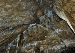 2016_05_9072_jaskinia-niedzwiedzia
