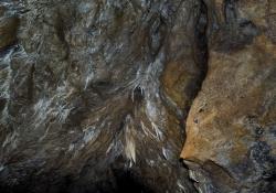 2016_05_9100_jaskinia-niedzwiedzia